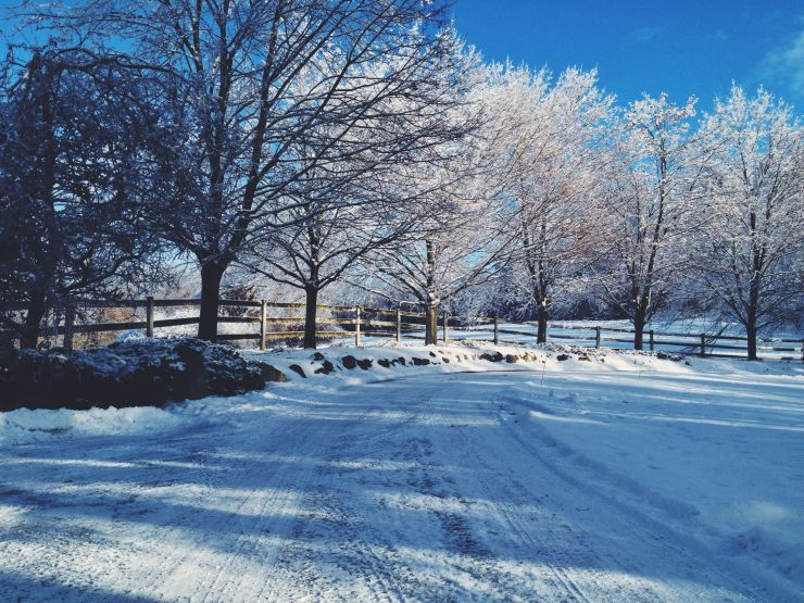 A snow covered drive.